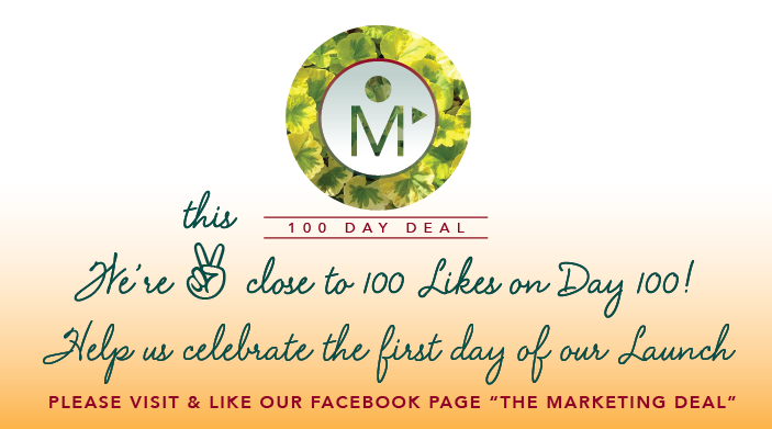 TMDDeal Opt-In Launch Day 100 Like on Day 100-01